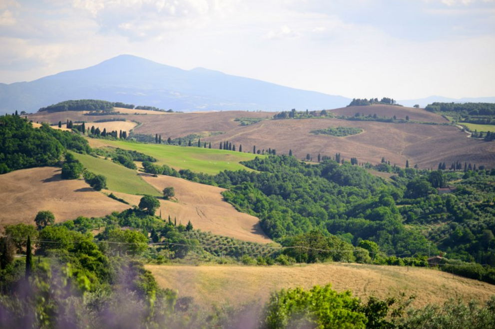 country villa in southern tuscany lavander