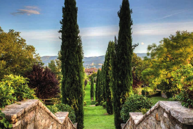 view of a cypress road from a hamlet in tuscany