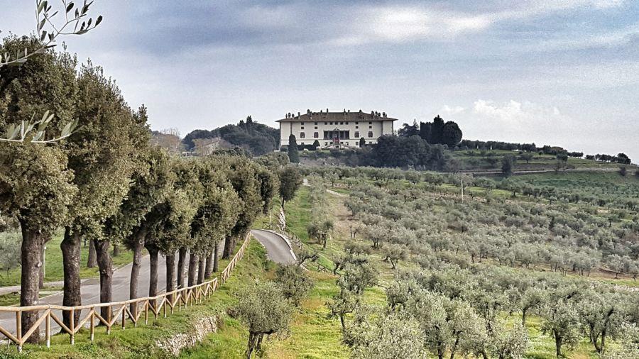 road to the villa medicea in tuscany