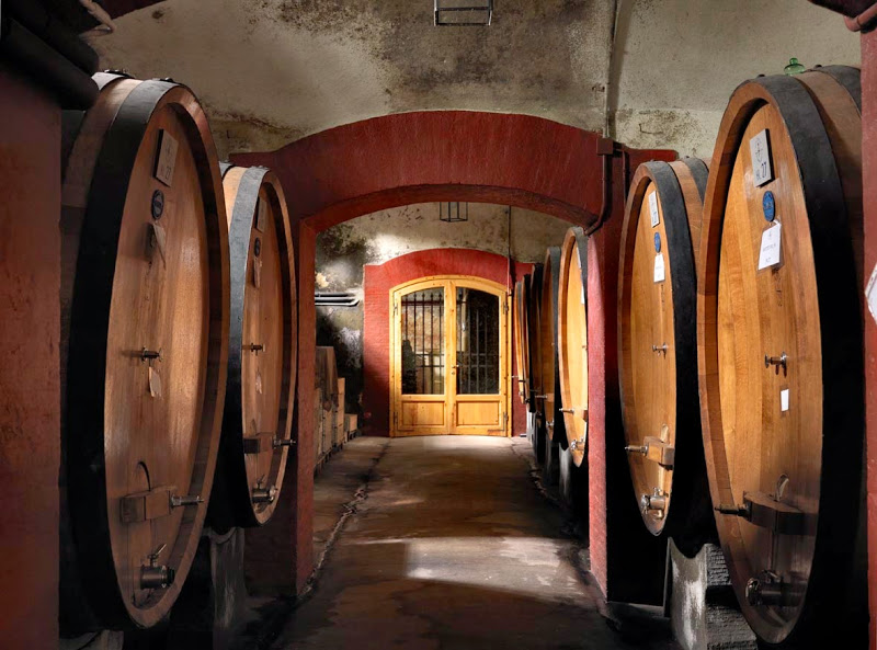 cellar in a villa in the tuscan countryside