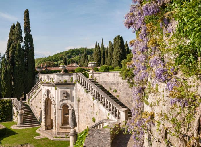 wedding villa in tuscany with wisteria